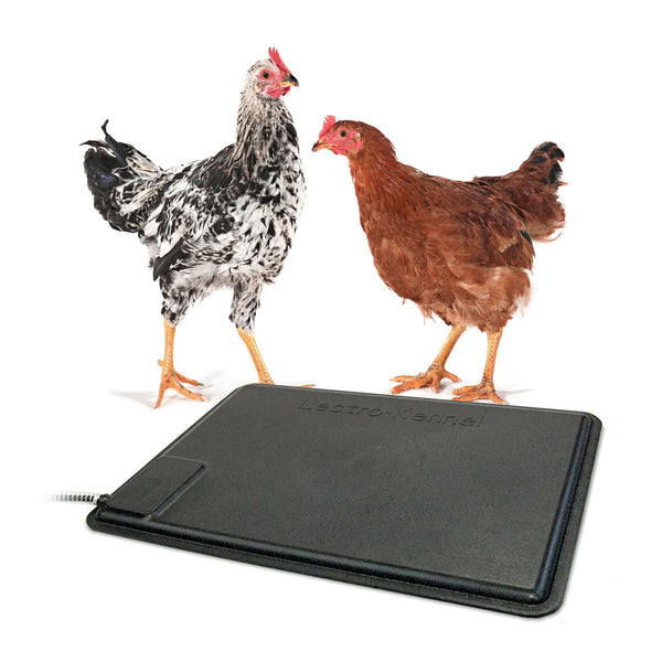 K&H Pet Products Thermo-Chicken Heated Pad