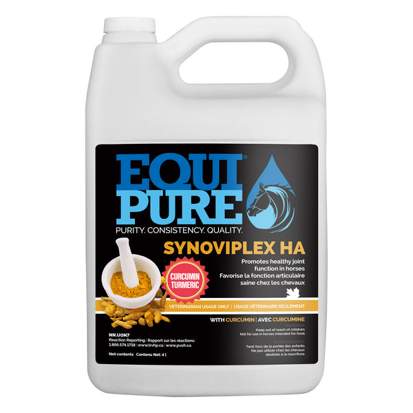 Equipure Synoviplex Ha 4L With Curcumin (Turmeric) - Equine Supplements Equipure - Canada