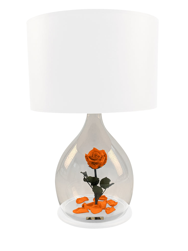 Rosen Lampe mit Rose in Orange