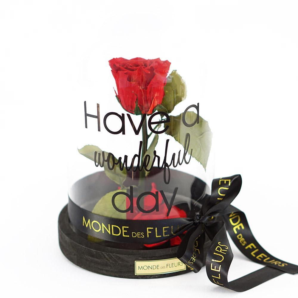 "LA PETITE ""HAVE A WONDERFUL DAY"" CLASSY RED - MONDE DES FLEURS"