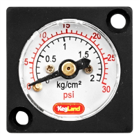 Mini Pressure Gauge (0-30 PSI)