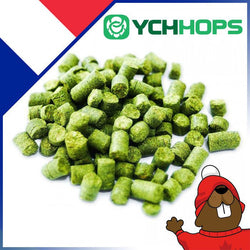 French Strisselspalt Hop Pellets (1oz)