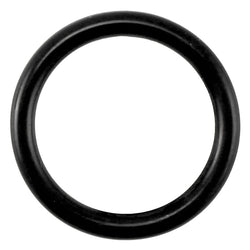 Taprite Replacement Probe O-Ring for Sanke A & G Couplers [CH5903]
