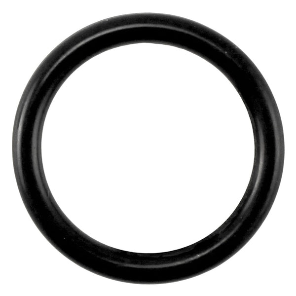 Taprite Replacement Probe O-Ring for Sanke U Coupler [44-25552-1]