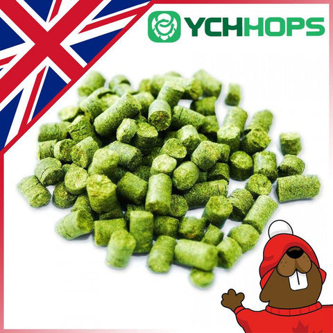 UK Fuggle Hop Pellets - 1oz