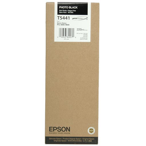 Epson Photo Black UltraChrome Ink Cartridge 220 ml - T544100