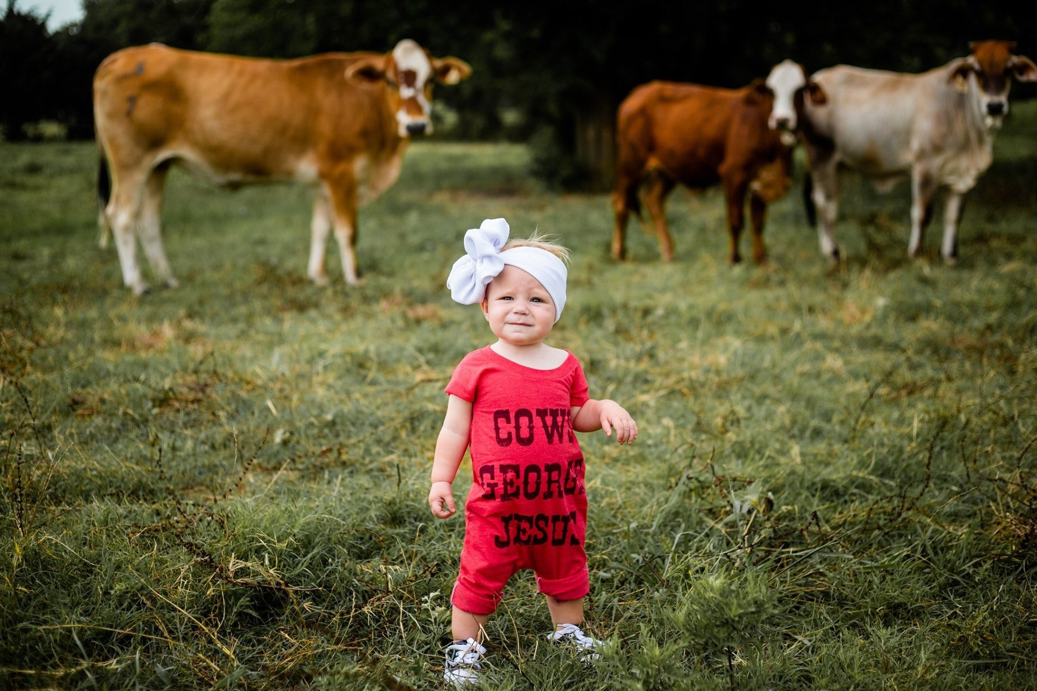 Cows, George & Jesus - Little Southern Swag