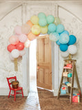 Balloon Arch Kit in Gold or Rainbow