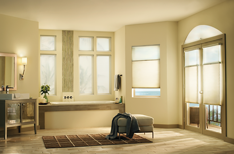 Hunter Douglas Window Treatment Applause fancy large bathroom