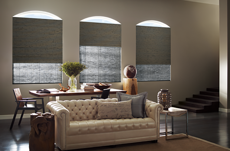 Hunter Douglas Window Treatment provenance double layered for lighting control