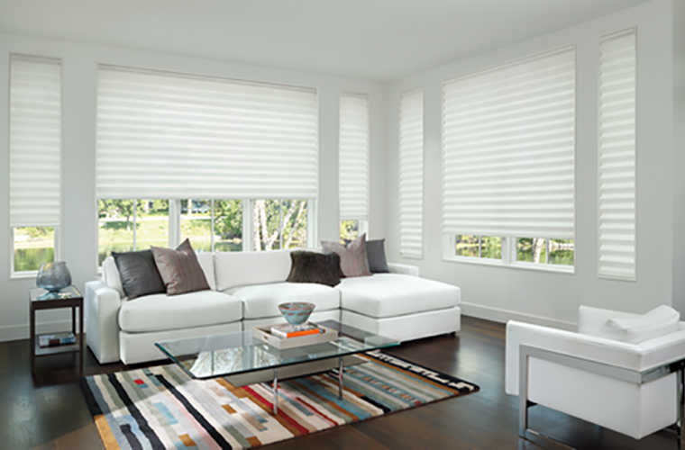 Hunter Douglas Window Treatment solera white living room modern