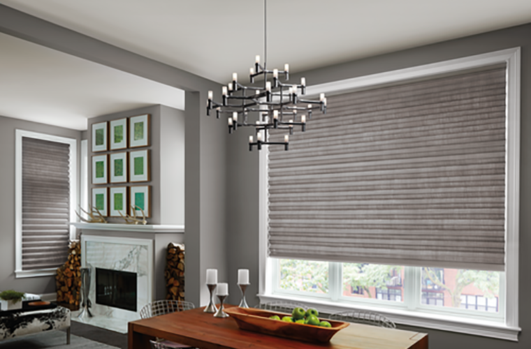 Hunter Douglas Window Treatment solera honeycomb living/dining