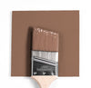 Wet and dry colour sample of Benjamin Moore 1235, Fox Hollow Brown.