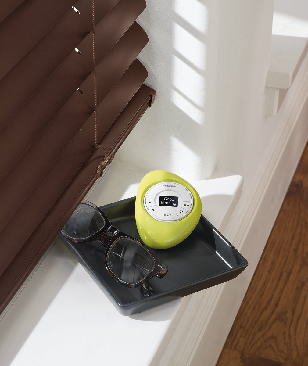Hunter Douglas Pebble Scene Controller by window treatment