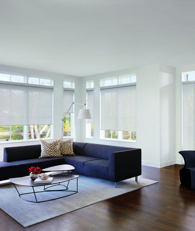 Hunter Douglas Window Treatments Skyline Living Room