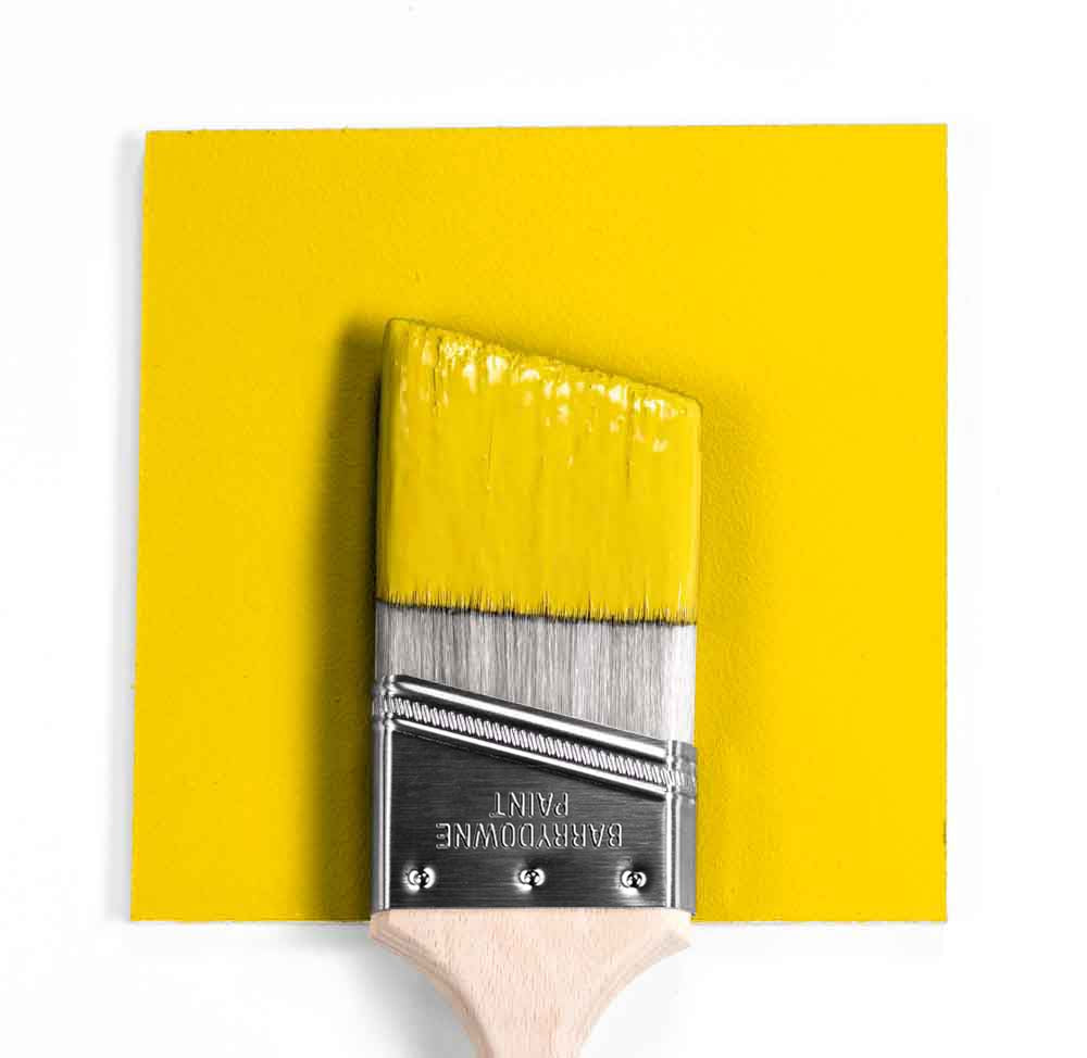 Sun Porch Yellow Brush Mock Up