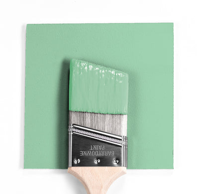 Benjamin Moore Colour 2034-50 Acadia Green wet, dry colour sample.