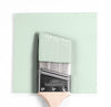 Benjamin Moore Colour 2034-70 Daiquiri Ice wet, dry colour sample.