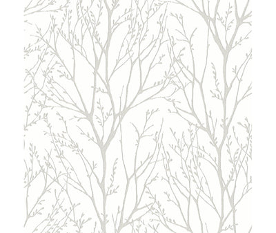 Autumn Silver Tree Wallpaper available at Barrydowne Paint