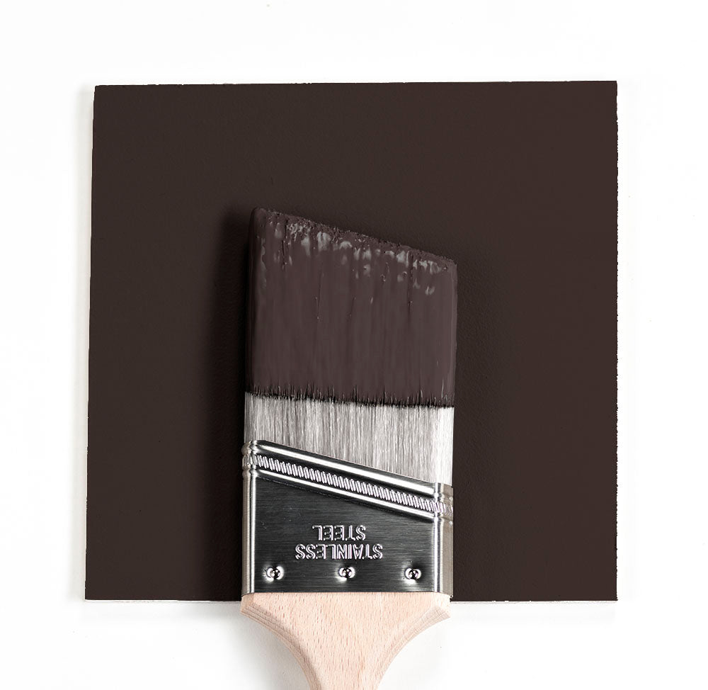 CSP-30 Espresso Bean Benjamin Moore Paint Brush Mock Up