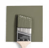 Benjamin Moore Colour HC-112 Tate Olive wet, dry colour sample.