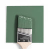 Benjamin Moore Colour HC-127 Fairmont Green wet, dry colour sample.