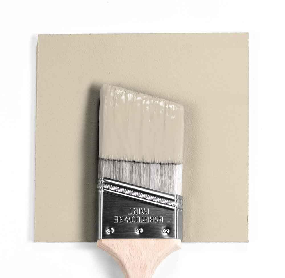 Benjamin Moore Colour HC-81 Manchester Tan wet, dry colour sample.