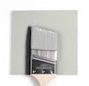 Benjamin Moore Colour OC-52 Gray Owl wet, dry colour sample.