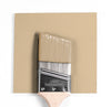 Benjamin Moore Colour CC-150 Sandy Brown wet, dry colour sample.