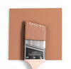 Benjamin Moore Colour CC-182 Frontenac Brick wet, dry colour sample.