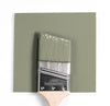 Benjamin Moore Colour CC-560 Raintree Green wet, dry colour sample.