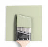 Benjamin Moore Colour CC-580 Glazed Green wet, dry colour sample.