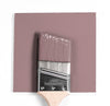 Benjamin Moore Colour CC-6 Muskoka Dust wet, dry colour sample.