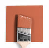 Benjamin Moore Colour CC-96 Flower Pot wet, dry colour sample.
