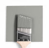 Benjamin Moore Colour HC-179 Platinum Gray wet, dry colour sample.