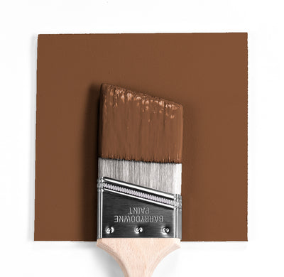 Benjamin Moore Colour Hc-186 Charleston Brown wet, dry colour sample.