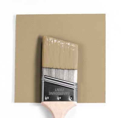 Benjamin Moore Colour HC-91 Danville Tan wet, dry colour sample.