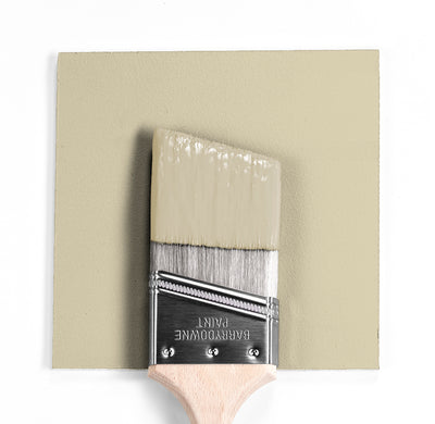 Benjamin Moore Colour HC-99 Abingdon Putty wet, dry colour sample.