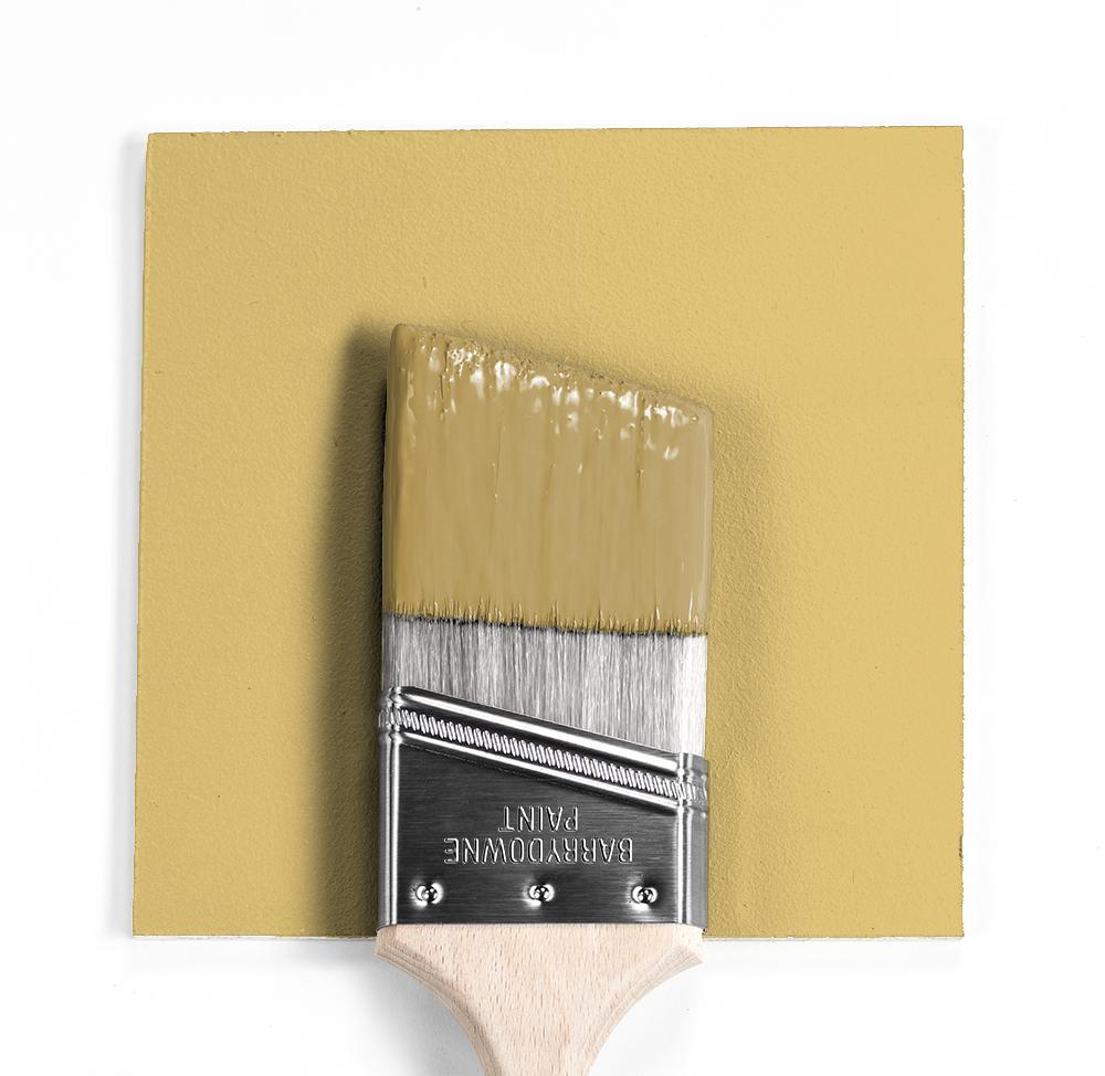 Benjamin Moore Colour HC-11 Marblehead Gold wet, dry colour sample.