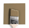 Benjamin Moore Colour HC-19 Norwich Brown wet, dry colour sample.