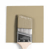 Benjamin Moore Colour HC-25 Quincy Tan wet, dry colour sample.