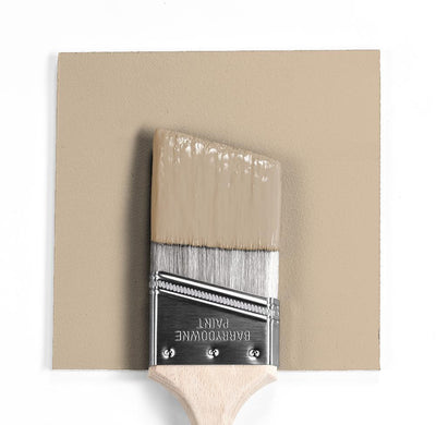 Benjamin Moore Colour HC-48 Bradstreet Beige wet, dry colour sample.