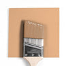 Benjamin Moore Colour HC-52 Ansonia Peach wet, dry colour sample.