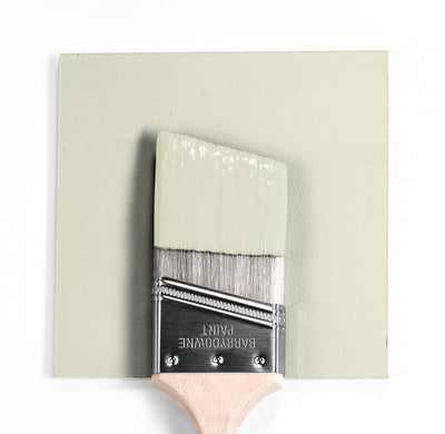 Benjamin Moore Colour OC-135 Cream Cloak wet, dry colour sample.