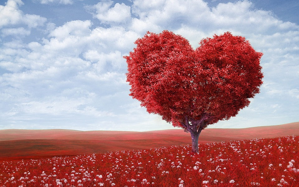 gifting trees - heart shaped tree