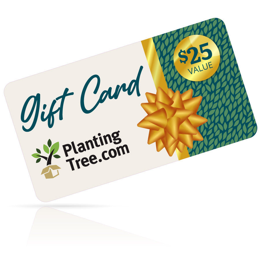 planting tree gift cards