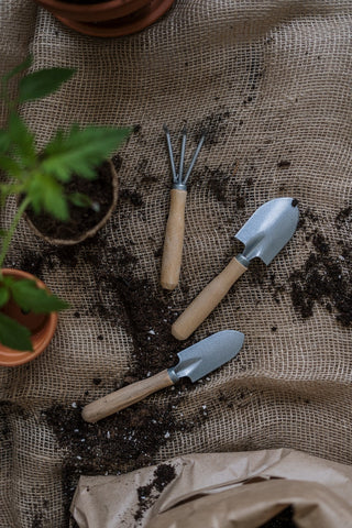 how to plant a tree - gardening tools
