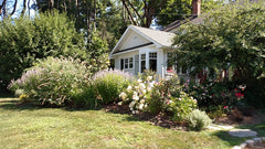 easy landscaping ideas for front of house - privacy and massing
