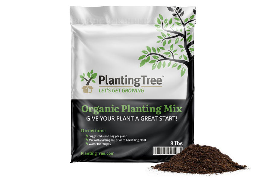 what plant care supplies do you carry?