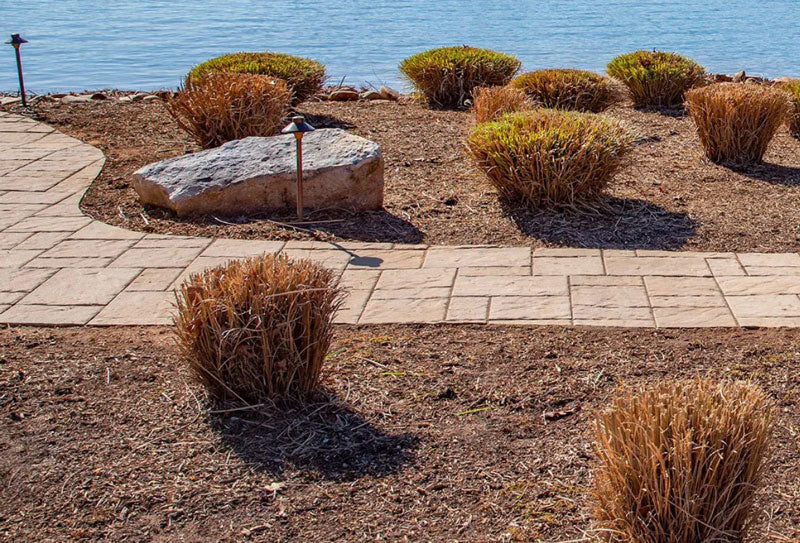 when do you cut back ornamental grasses?